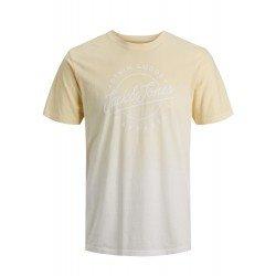 Camiseta JJTIM TEE SS Flan